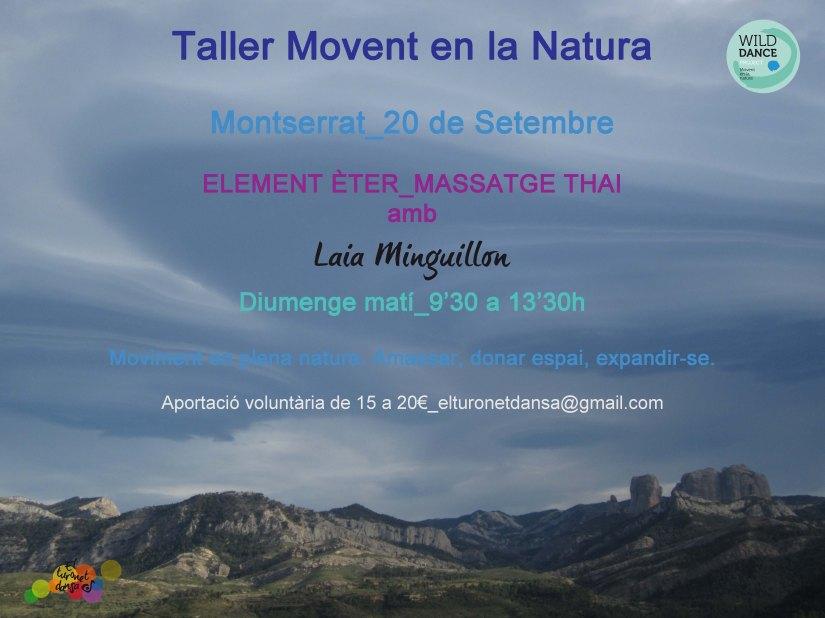 Taller Element Èter_20Set