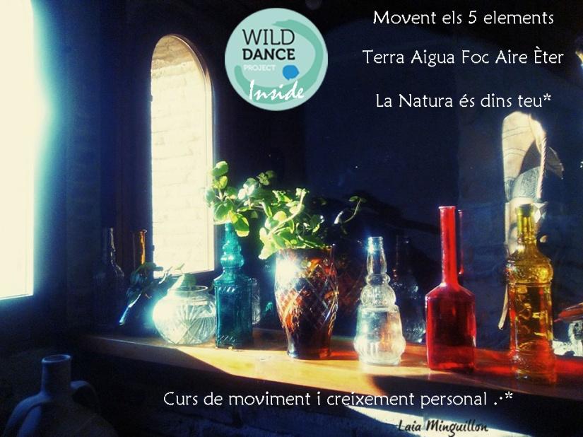 Wild Dance project Inside publi